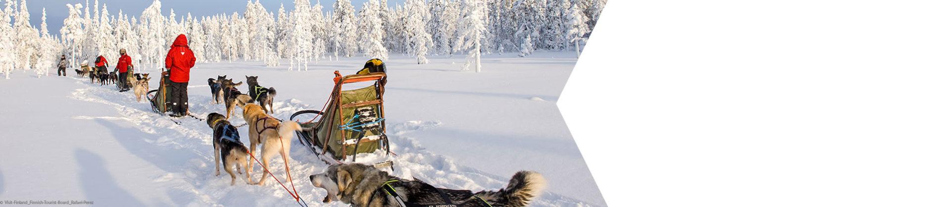 Die Natur Finnisch-Lappland erleben